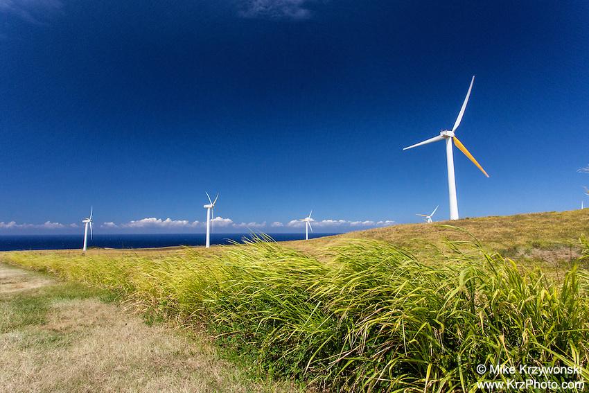 Windmills in a grassy field w/ ocean in background, north Kohala, Big Island, Hawaii