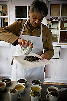 Rajah Swaraj Banerjee tastes each batch of tea produced in Makaibari. Tea tasting is strikingly similar to what one would imagine of a teetotaler's wine tasting. Rajah and his experts taste every batch of tea as a quality control measure. Just by tasting the finished tea, which must be correctly brewed, connoisseurs can tell exactly where the error occurred in the processing stages of a faulty tea.<br /> Flavors of different types of tea are influenced by time and style of picking as well as method of processing.