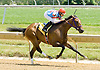 Mason's Hope winning at Delaware Park on 6/9/12