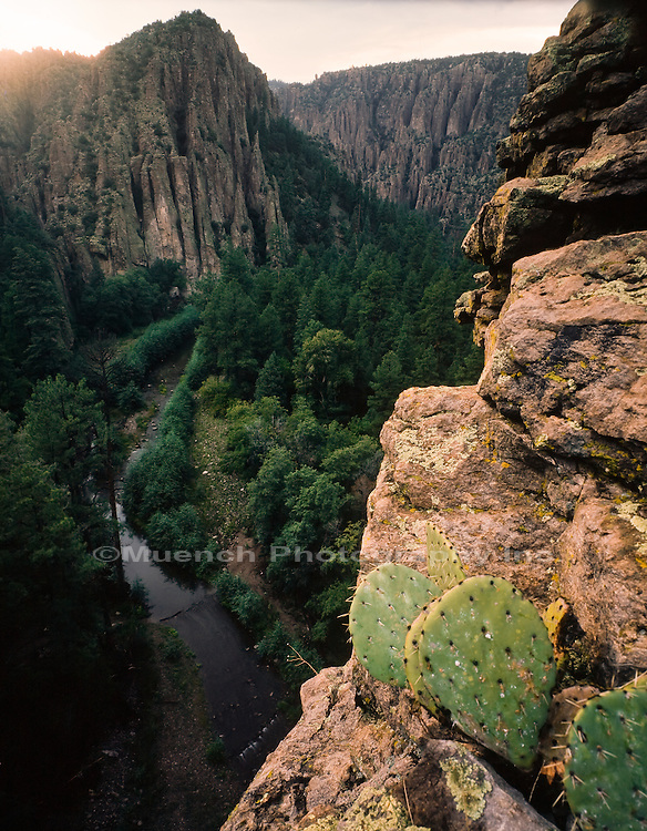 West Fork, Gila River, Gila Wilderness, New Mexico