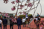 TAKARAZUKA,JAPAN-MAR 22: Track scene at Hanshin Racecourse on March 22,2020 in Takarazuka,Hyogo,Japan. Kaz Ishida/Eclipse Sportswire/CSM