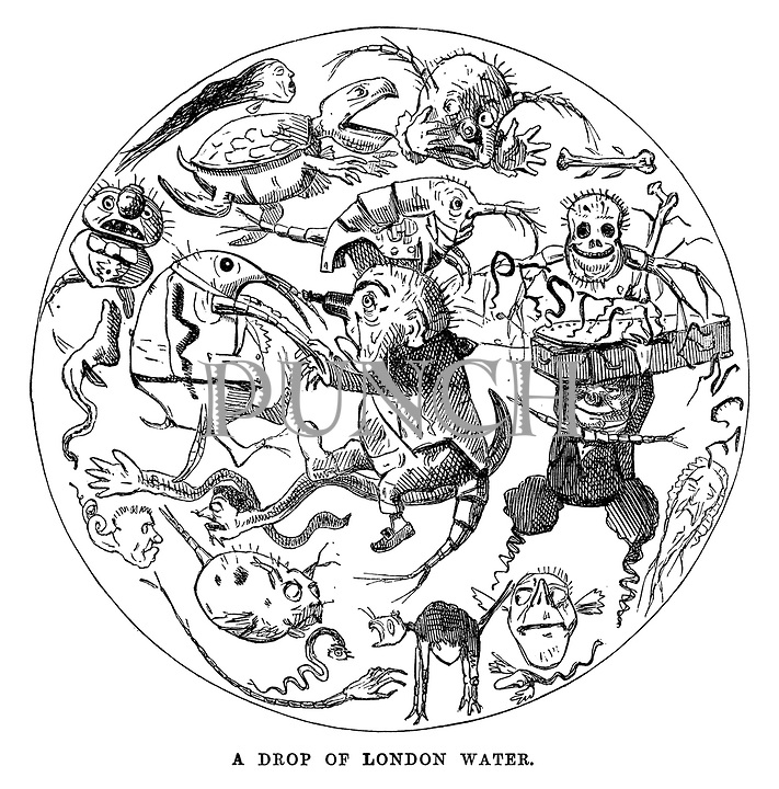 victorian cartoons from punch