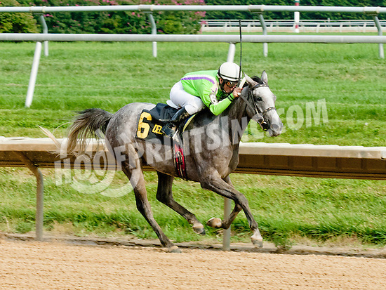 Delishess winning The Cre Run Oaks Arabian Stakes (Gr 2) at Delaware Park on 8/31/2013