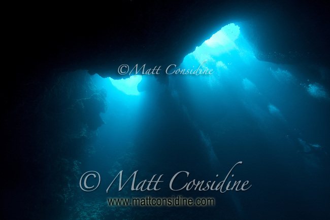Looking up at two of the entrance holes in the top of the Blue Holes cave system. The divers' bubble bursts march across the face of the cave Palau Micronesia. (Photo by Matt Considine - Images of Asia Collection)