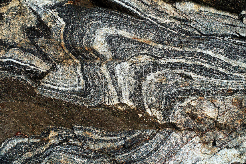 earth science geology metamorphic rock folded gneiss