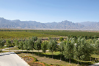 China - Ningxia - An overview of the vineyards of Chateau Mihope spreading all the way to the Helan mountains. The Chateau was built in 2016 by an Italian designer at a cost of 25 million euros. It belongs to Midea Group, one of the biggest manufacturers of electric appliances in China.