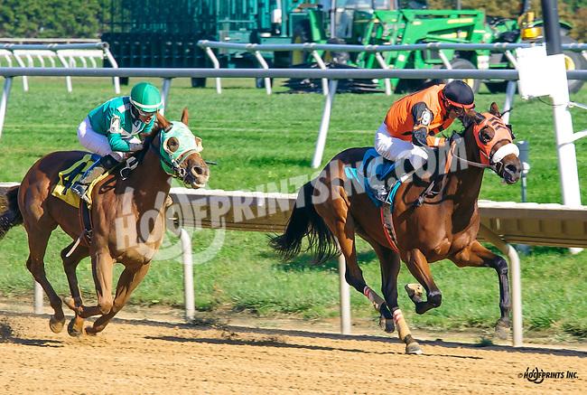 Fillupcohensapacker winning at Delaware Park on 10/5/16 Fillupcohensapiker winning at Delaware Park on 10/5/16