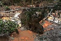 """Currutela.<br /> No meio da mata garimpeiros continuam a cavar em busca de ouro na grota Rica. Milhares de garimpeiros se encontram espalhados pela regi""""o do Garimpo em busca de novas jazidas. O  garimpo descoberto em Novo Aripuan"""", no sul do Amazonas no igarapÈ da Preciosa, um afluente do rio Juma (a 70 km da cidade de ApuÌ) vai crescendo com dezenas de buracos abertos sob a selva.<br /> Novo Aripuan"""", Amazonas, Brasil<br /> 01/02/2007<br /> Foto Paulo Santos/Interfoto"""