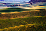 Red barn at sunrise with rolling hills of wheat in the Palouse region of Washington