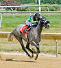 Peaceadaction winning at Delaware Park on 7/12/12