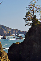Rugged Oregon Coast, Brookings Oregon
