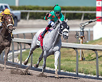 HALLANDALE BEACH, FL - MAR 31:Conquest Big E #1 trained by Donna Green Hurtak with Jose Batista in the irons passes the final turn and heads down the home stretch on the way to winning The Gulfstream Park Hardacre Mile Stakes (G2) at Gulfstream Park on March 31, 2018 in Hallandale Beach, Florida. (Photo by Bob Aaron/Eclipse Sportswire/Getty Images)