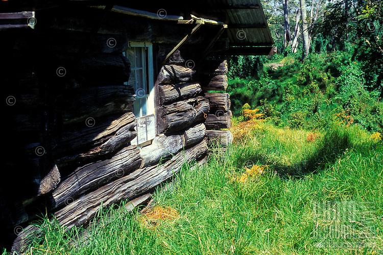 Side view of old homestead log cabin on Mauna Kea on the Big Island of Hawaii.