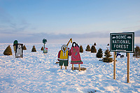 Nome national forest on the norton sound sea ice, Alaska