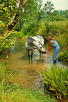 Arabian Mare and woman in green glade with stream. Friendship trust harmony. horse, horses, animals, pets. Debbie Kelly, Aalusive Bey. Alabama, Resting S Ranch.