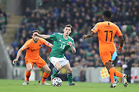 16th November 2019; Windsor Park, Belfast, County Antrim, Northern Ireland; European Championships 2020 Qualifier, Northern Ireland versus Netherlands; Gavin Whyte of Northern Ireland pushes forward  - Editorial Use