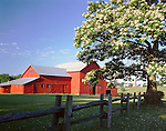 LaSalle County, IL<br /> Red barn, split rail fence and flowering catalpa tree