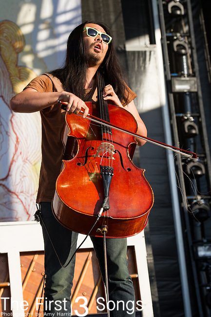 Joe Kwon of The Avett Brothers performs during Day 1 of the 2013 Firefly Music Festival in Dover, Delaware.