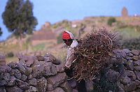 Young man in traditional hat and clothing carrying a large bundle of sticks on his back as he crosses over a stone fence, Taquile Island, Lake Titicaca, Peru