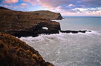 Dyke Head