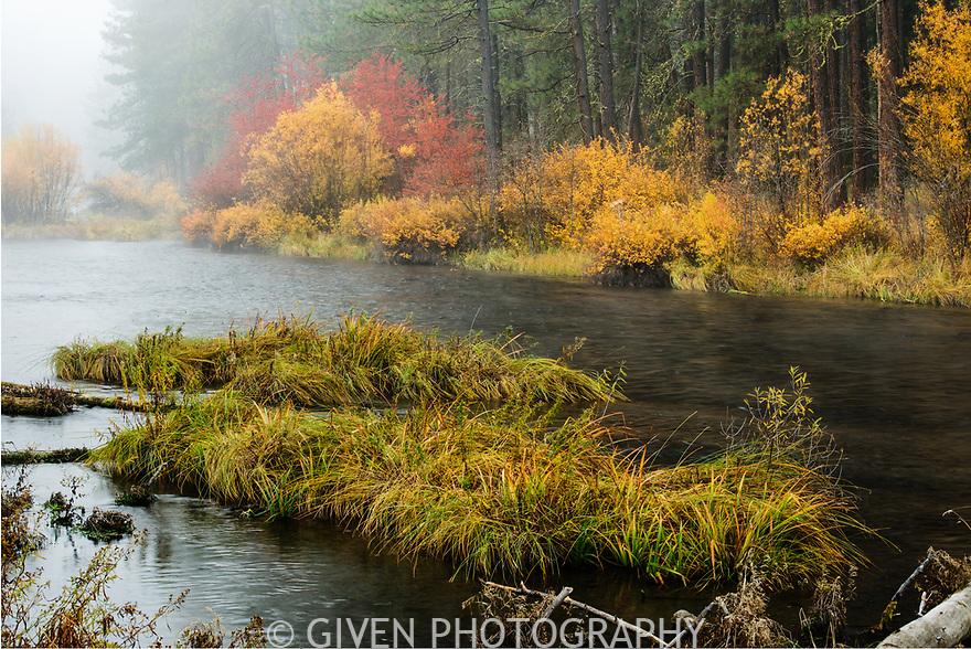 Metolious River, Deschutes National Forest, Oregon