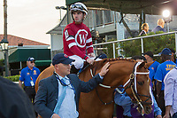 HALLANDALE BEACH, FL  JANUARY 27: #10 Gun Runner ridden by Florent Geroux, in the post parade of the Pegasus World Cup Invitational, at Gulfstream Park Race Track on January 27, 2018,  in Hallandale Beach, Florida. (Photo by Casey Phillips/ Eclipse Sportswire/ Getty Images)