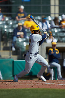 Austin Davis (21) of the West Virginia Mountaineers follows through on his swing against the Illinois Fighting Illini at TicketReturn.com Field at Pelicans Ballpark on February 23, 2020 in Myrtle Beach, South Carolina. The Fighting Illini defeated the Mountaineers 2-1.  (Brian Westerholt/Four Seam Images)