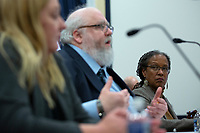 Lecia Brooks, Chief Workplace Transformation Officer at the Southern Poverty Law Center, listens as Dr. Mark Pitcavage, Senior Research Fellow at the Center on Extremism, testifies before the Subcommittee on Military Personnel at the United States Capitol in Washington D.C., U.S. on Tuesday, February 11, 2020.  <br /> <br /> Credit: Stefani Reynolds / CNP/AdMedia
