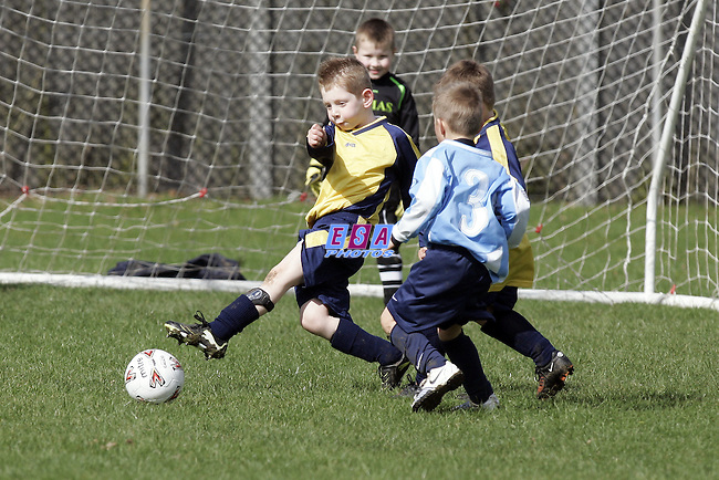 LAINDON PUMAS v INTERSPORTS<br /> U6 Friendly Saturday 26th March 2010 VENUE Phoenix School, Laindon