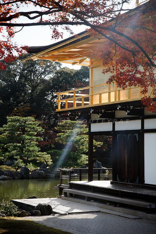Kyoto, November 24 2011 - Kinkaku-ji ( temple of the golden pavillon) in Kyoto.