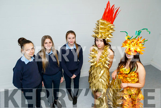 St Joseph's Secondary School students display their Junk Kature creations that won at the Munster Junk Kature and are now going forward to National finals. <br /> Front l to rL Katie McAulliffe and Jade Meaney.<br /> Back l to r: Sinead Kirby, Shianne Meaney and Eabha Bryant