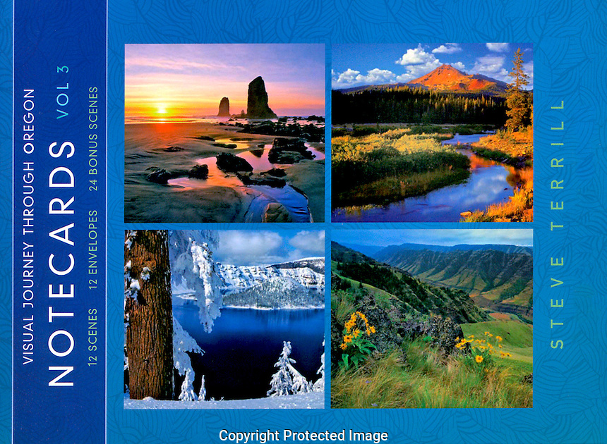 NOTECARD VOLUME - Price 14.99$. <br /> Cover. Twelve A-7 (5 x 7) cards and envelopes per package Sturdy folio style package with secured flap. Cards printed on recylced content, 10 pt. C1S, cast coated paper. Each box is shrink-wrapped to secure and protect its contents