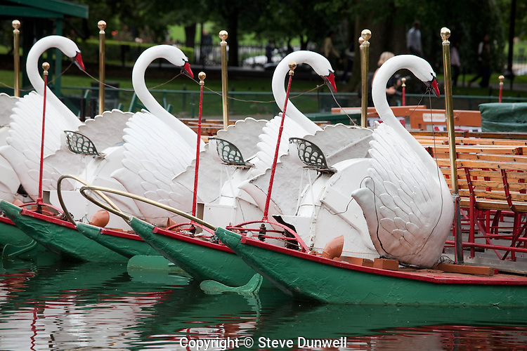 Swan boats, Public Garden, Boston, MA