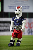 The Binghamton Rumble Ponies mascot during a game against the Altoona Curve on May 17, 2017 at NYSEG Stadium in Binghamton, New York.  Altoona defeated Binghamton 8-6.  (Mike Janes/Four Seam Images)
