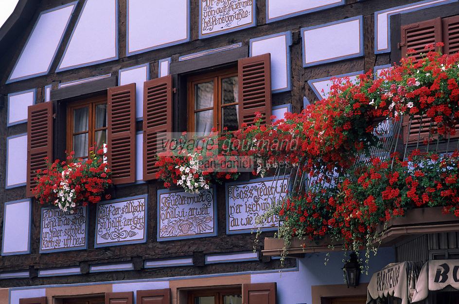 Europe/France/Alsace/67/Bas-Rhin/Val de Moder : Détail des maisons du village