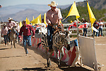 Stockman Aryn Hedrick, of Nickerson, Kansas, rides a zebra during an exhibition race at the 51st annual International Camel Races in Virginia City, Nevada  September 12, 2010. .CREDIT: Max Whittaker for The Wall Street Journal.CAMEL