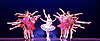 Les Ballets Trockadero de Monte Carlo <br /> at the Peacock Theatre, London, Great Britain <br /> press photocall <br /> 16th September 2015 <br /> <br /> <br /> Programme 1<br /> press night 16th September 2015 <br /> <br /> Paquita <br /> Chase Johnsey as Yakaterina Verbosovich<br /> <br /> <br /> <br /> <br /> Photograph by Elliott Franks <br /> Image licensed to Elliott Franks Photography Services