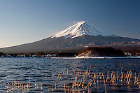 A snow capped Mount Fuji above Lake Kawaguchiko. Japan, Wednesday February 13th 2008