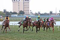 HALLANDALE BEACH, FL - APRIL 01:  #2 Sadler's Joy   wth jockey Julien Leparoux on board, runs wide to win the Pan American Stakes (Grade II) at Gulfstream Park on April 01, 2017 in Hallandale Beach, Florida. (Photo by Liz Lamont/Eclipse Sportswire/Getty Images)