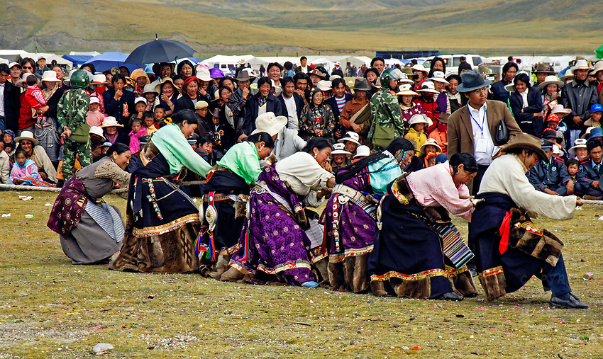 Tibetan Women against the Man in a Tug of War competition. Tibet's province of Nakchu in Tibet hosts many festivals throughout the year, but one stands out more than any other; it is the highest horse racing festival in the world – a spectacle of colour, festivities and endurance for participants and visitors alike.<br /> Over 10,000 people will cross high passes of more than 4,000 metres by foot, horse and jeep to make their way to the Nakchu Racecourse, to race, eat, drink and make merry during this annual festival. This racecourse, at 4,500 metres, is undoubtedly the highest racecourse in the world.
