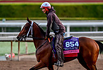 October 27, 2019 : Breeders' Cup Juvenile Fillies Turf entrant Croughavouke, trained by Jeff Mullins, exercises in preparation for the Breeders' Cup World Championships at Santa Anita Park in Arcadia, California on October 27, 2019. Scott Serio/Eclipse Sportswire/Breeders' Cup/CSM