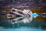 Dirty Iceberg, containg mud and organic matter in Kongsfjord, Ny Alesund, Svalbard