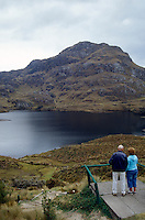 Tourists looking at Lake Toreadora in Casas National Park in the the Andean Paramo, Ecuador, South America