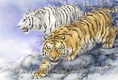Kayomi, REALISTIC ANIMALS, REALISTISCHE TIERE, ANIMALES REALISTICOS, paintings+++++,USKH270,#A#