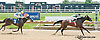 Maxine's Pride winning at Delaware Park on 7/27/13