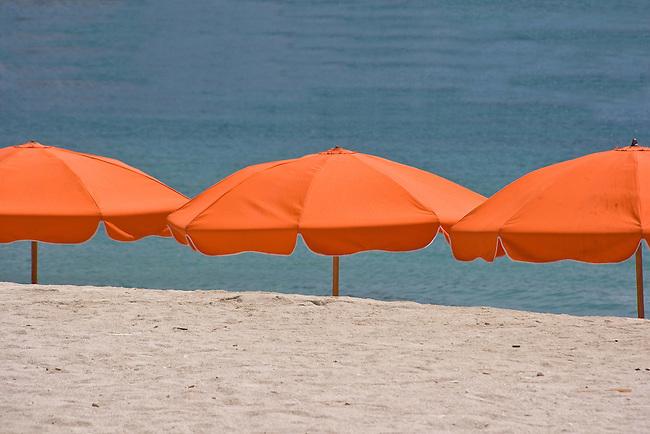 Florida under the Sun