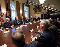United States President Donald J. Trump makes statements on the ongoing investigation of  election meddling and on the current situation in Syria during a meeting with senior military leadership at The White House in Washington, DC, March 9, 2018.<br /> <br /> CAP/MPI/RS<br /> &copy;RS/MPI/Capital Pictures