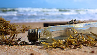A bottle sits among the seaweed after washing ashore in Ormond Beach, FL, November 2011.  (Photo by Brian Cleary/www.bcpix.com)