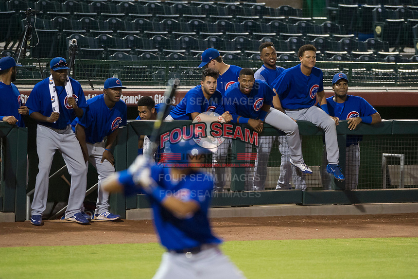 Members of the AZL Cubs cheer during a Luis Vazquez at bat during Game Three of the Arizona League Championship Series against the AZL Giants on September 7, 2017 at Scottsdale Stadium in Scottsdale, Arizona. AZL Cubs defeated the AZL Giants 13-3 to win the series two games to one. (Zachary Lucy/Four Seam Images)