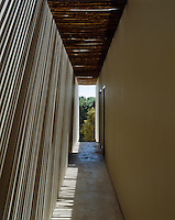 The sunlight filtering through the eucalyptus above this corridor creates an interesting pattern on the walls of this corridor